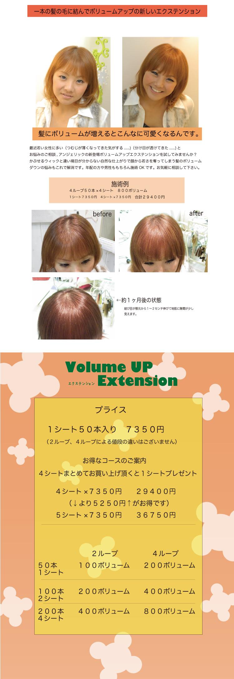 volume-kiji